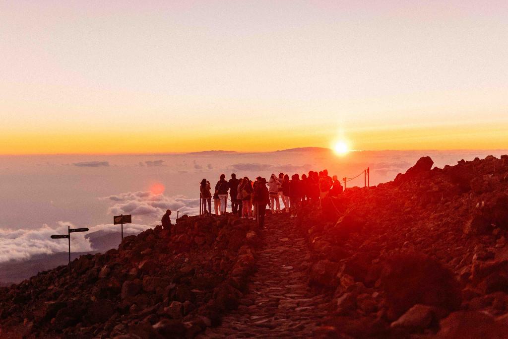 Viaje Incentivo Merz Tenerife
